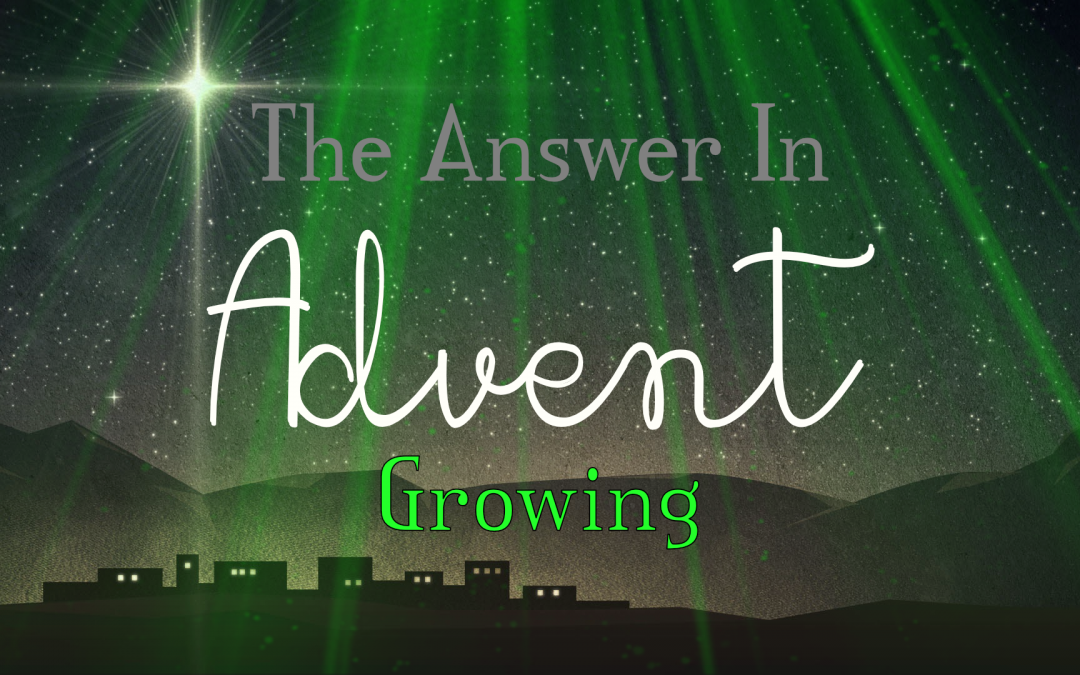 The Answer in Advent: Growing